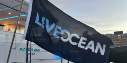 Live Ocean friends